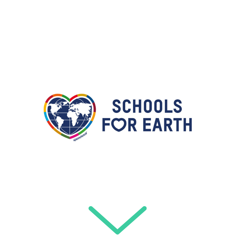 Logo Schools for Earth